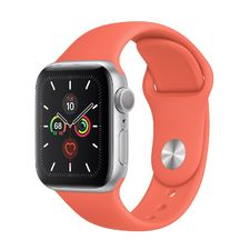 Apple Watch Silver Aluminum Case/Clementine Sport Band 40mm Series 5