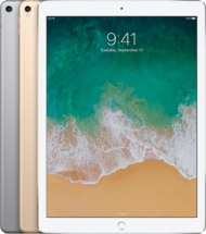 "Apple iPad Pro 12.9"" 256GB Wi-Fi+Cellular (2017)"