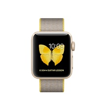 Gold Aluminum Yellow/Light Gray Woven Nylon 38mm Series 2