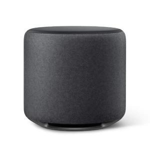 Amazon Echo Sub Speaker